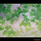Raamfolie Groene bladmotieven 46cm