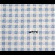 Plakplastic-ruit-blauw-wit
